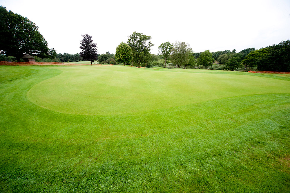 Golf course construction bunker renovation