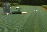 Grass Protection Mesh – Heavy Duty