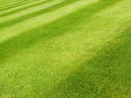 Golf Course Maintenance -April