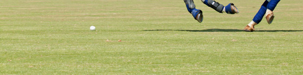 Polo Lawns - Sport Pitch Construction
