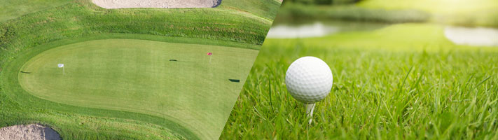Golf Course Solutions - Grassform