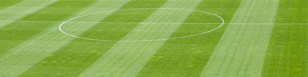Sport Pitch Coinstruction - Grassform